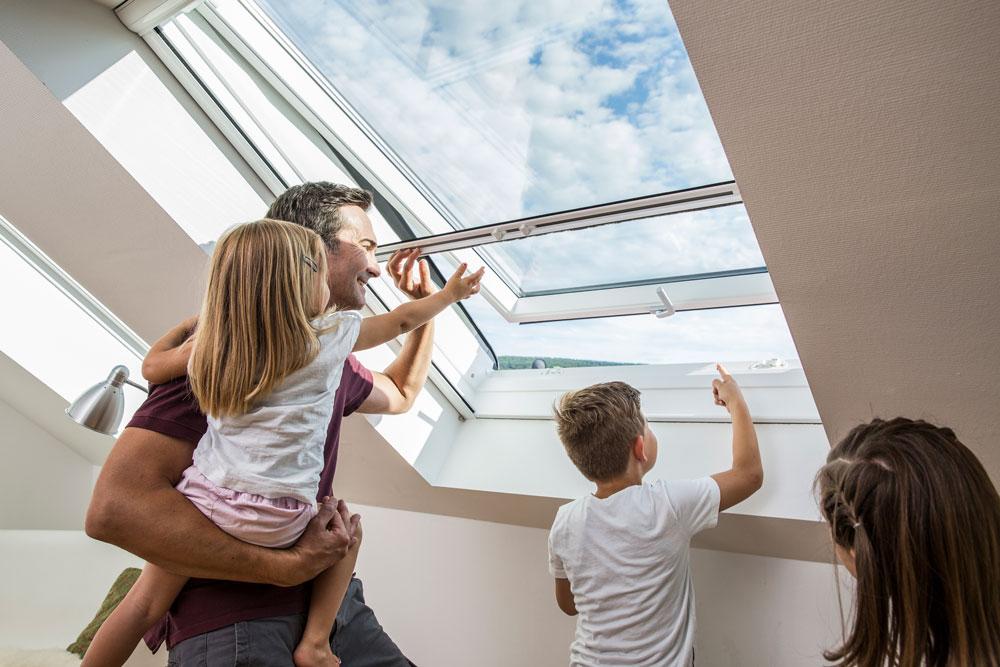 Lutz Insektenschutz Dachfensterrollo